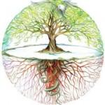 Vjerovanje u drveće u Hrvata